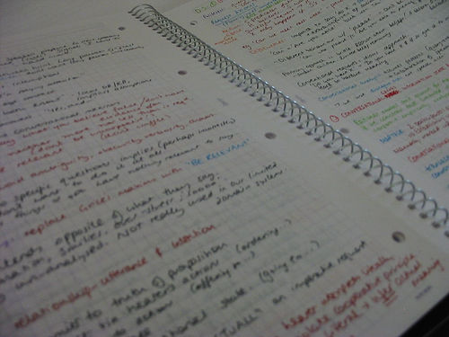 Revision Notes - photo by jez`