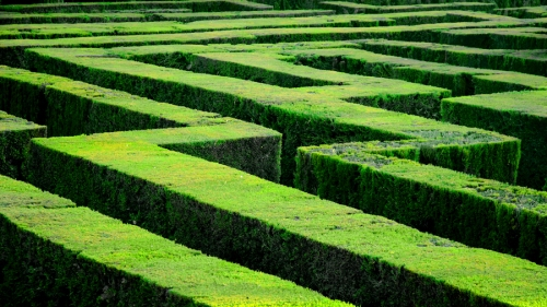 Maze (photo by MarcelGermain) CC BY-NC-ND 2.0