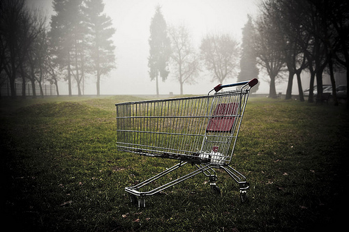 shopping trolley (photo by Funky64)