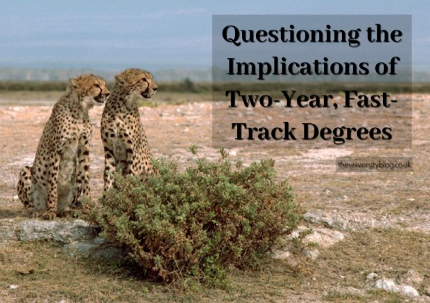 cheetahs-fast-track-degree